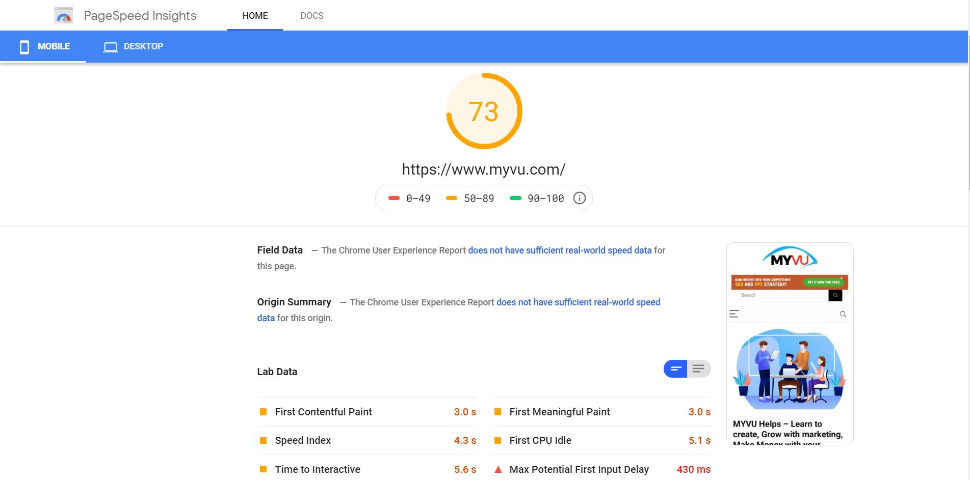 PageSpeed Insights-myvu