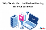 Why Should You Use Bluehost Hosting for Your Business?
